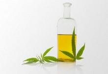 http://www.lacorameco.com.ar/imagenes/aceitecannabis_22sep.jpg