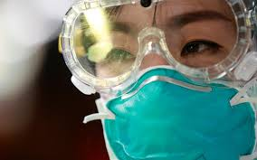 http://www.lacorameco.com.ar/imagenes/corona_virus1.jpg