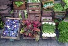 http://www.lacorameco.com.ar/imagenes/verduras_13sep.jpg